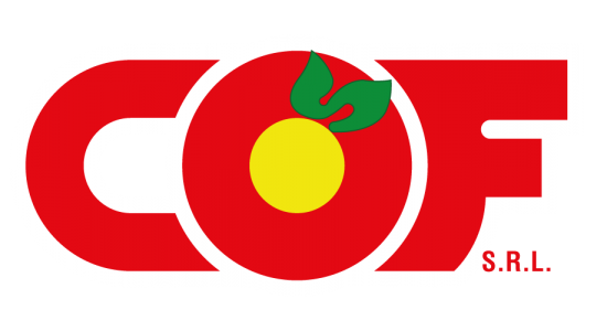 cropped-Logo-Vettoriale-1.png